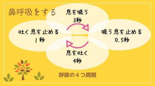 呼吸の4つの周期